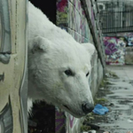 Greenpeace Polar Bear
